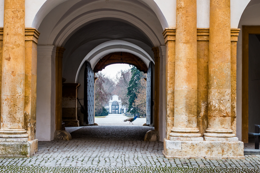 Things to Do in Graz: A Local's Guide