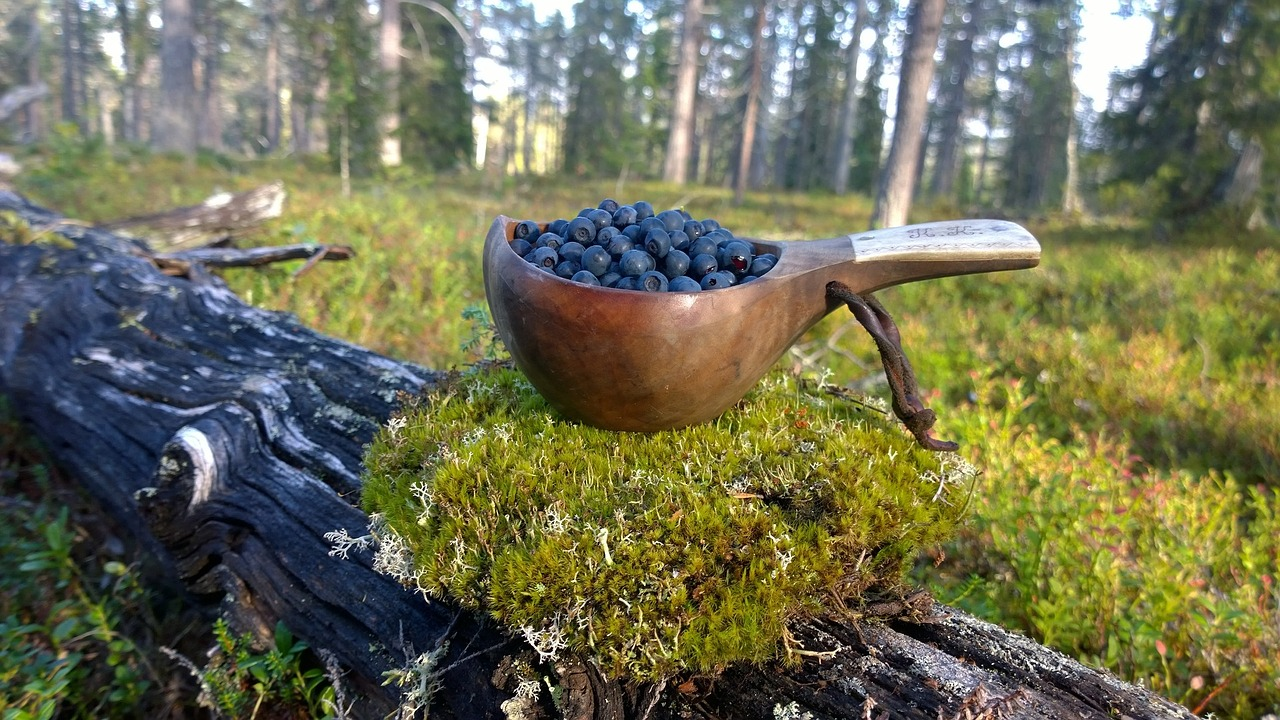 best souvenirs from finland kuksa finland souvenir
