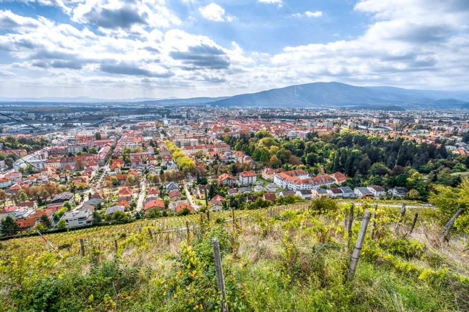 What to do in Maribor: The scenic Maribor hills and vineyards offer breathtaking views of Maribor.