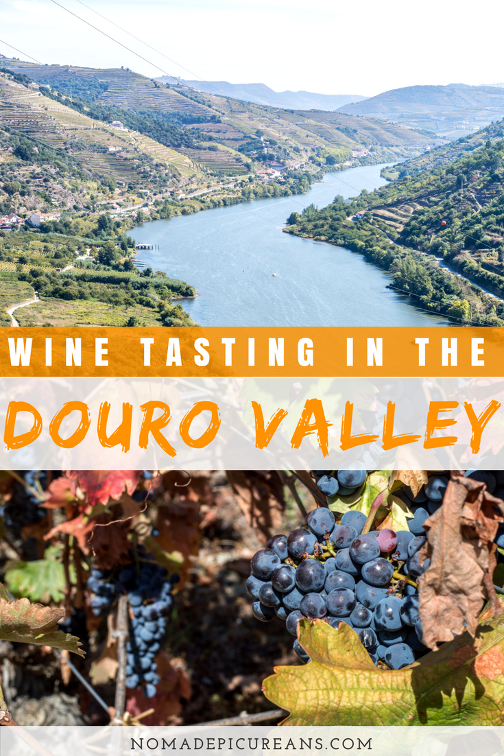 Would you like to do a day trip to the Douro Valley from Porto? Are you up for wine tasting in the Douro Valley? Then this post is for you. We introduce driving routes, must-see wineries, as well as some practical tips on how to visit the Douro Valley from Porto. #portugal #porto #dourovalley #travel