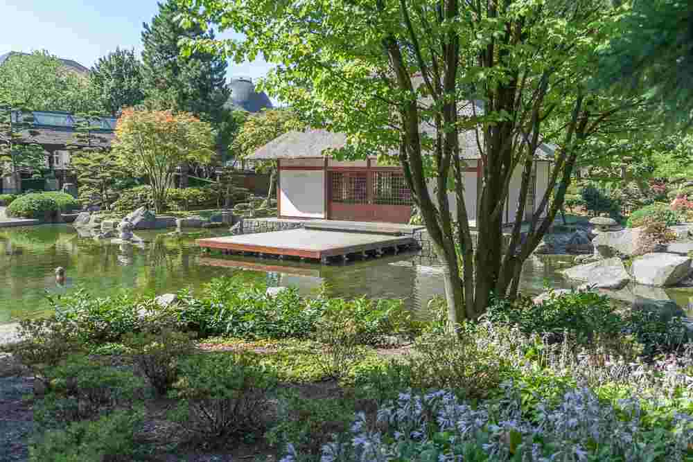 The Japanese garden is a must see during 3 days in Hamburg.