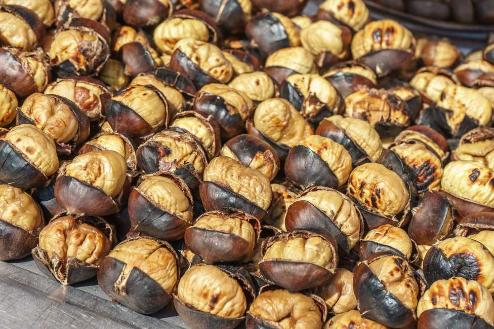 Well-roasted chestnuts are the perfect snack to munch on in Istanbul.