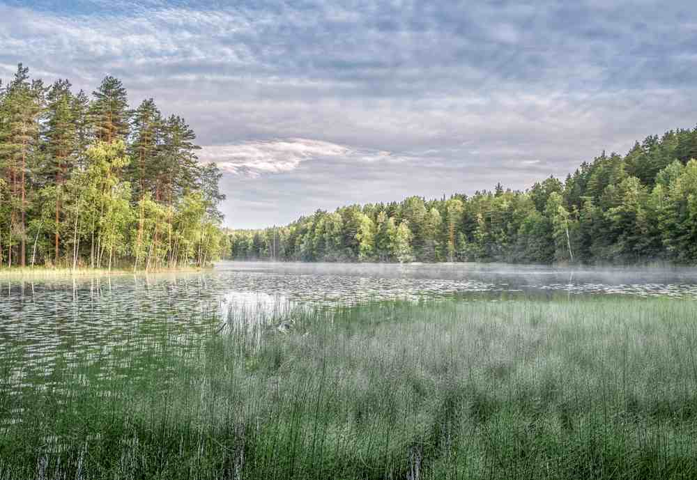 Nuuksio National Park makes the perfect day trip from Helsinki.