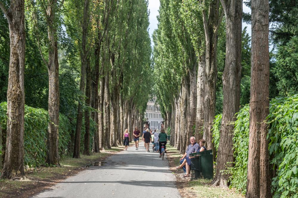 Der Assistenzfriedhof ist für Kopenhagen kulturhistorisch bedeutend.