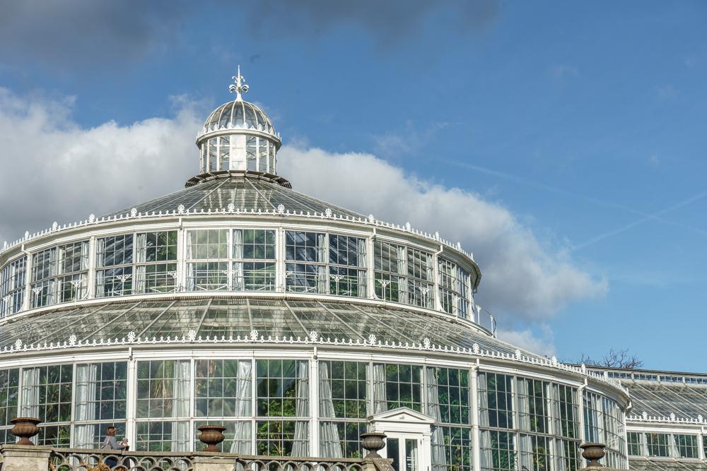 Das Palmenhaus im Botanischen Garten ist eine besondere Sehenswürdigkeit in Kopenhagen.