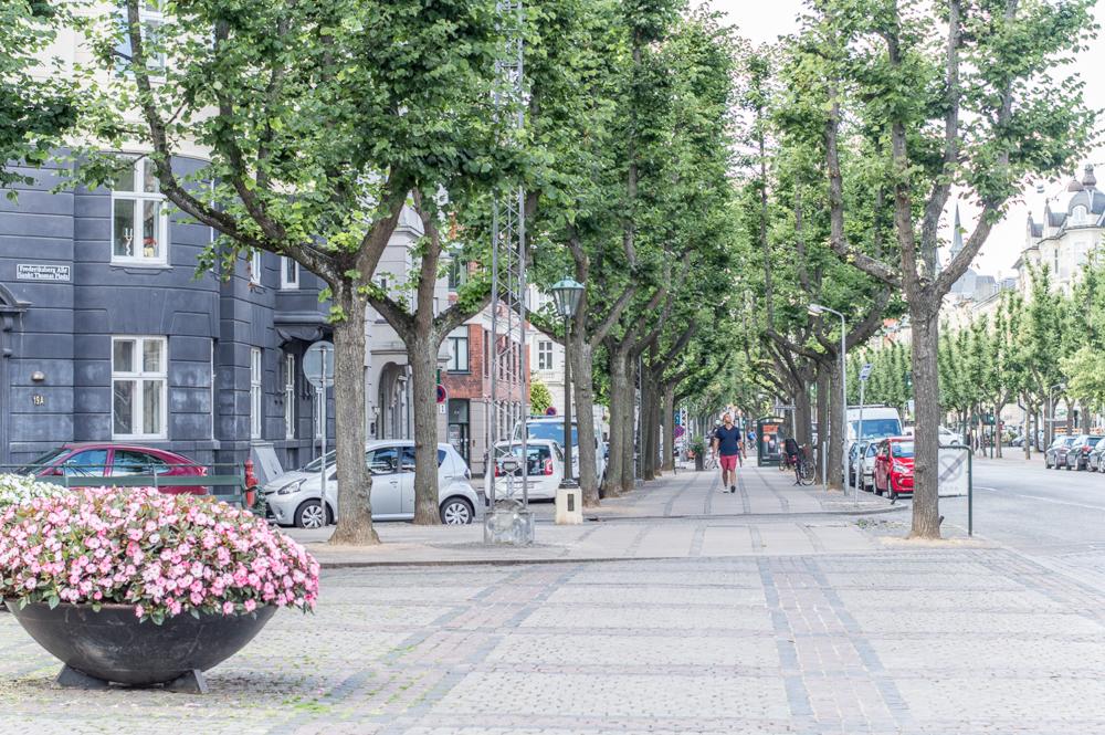 Frederiksberg Allee ist eine der schönsten Straßen in Kopenhagen.