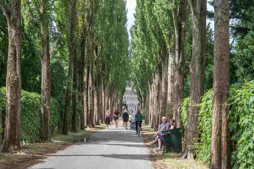 Assistens Kirkegård is a must-see during your 48 hours in Copenhagen.