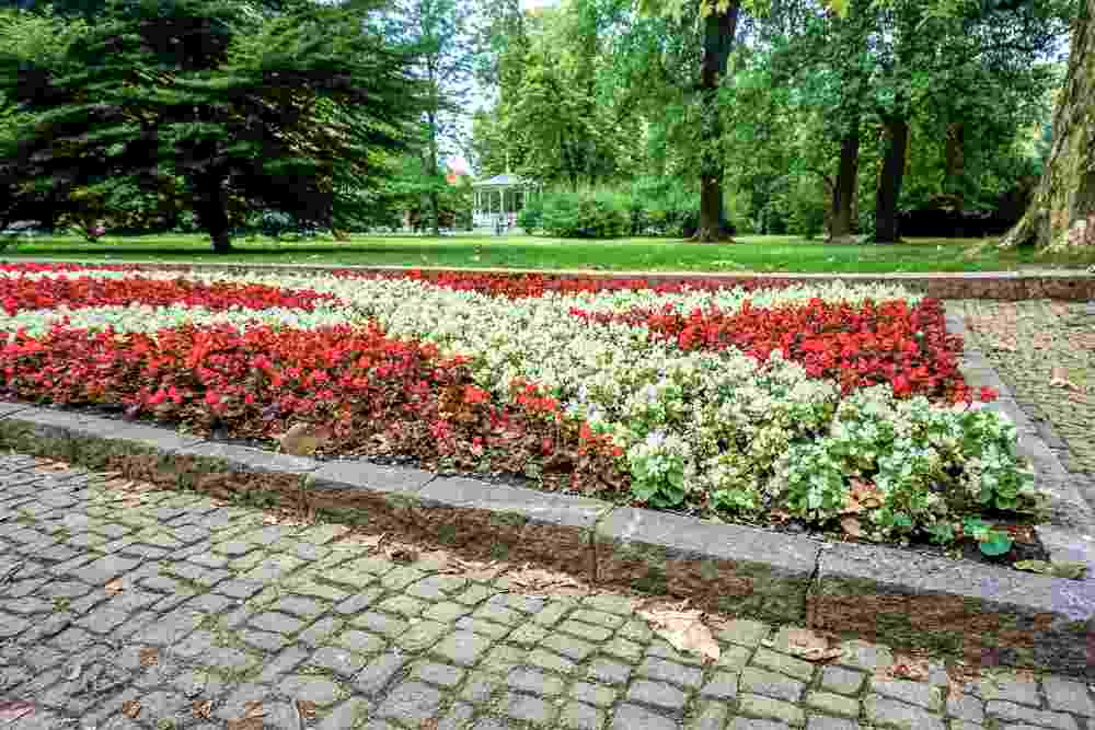 Best things to do in Maribor: The well manicured lawns of the popular City Park Bed with white and red begonias is one of the must-see attractions in Maribor.