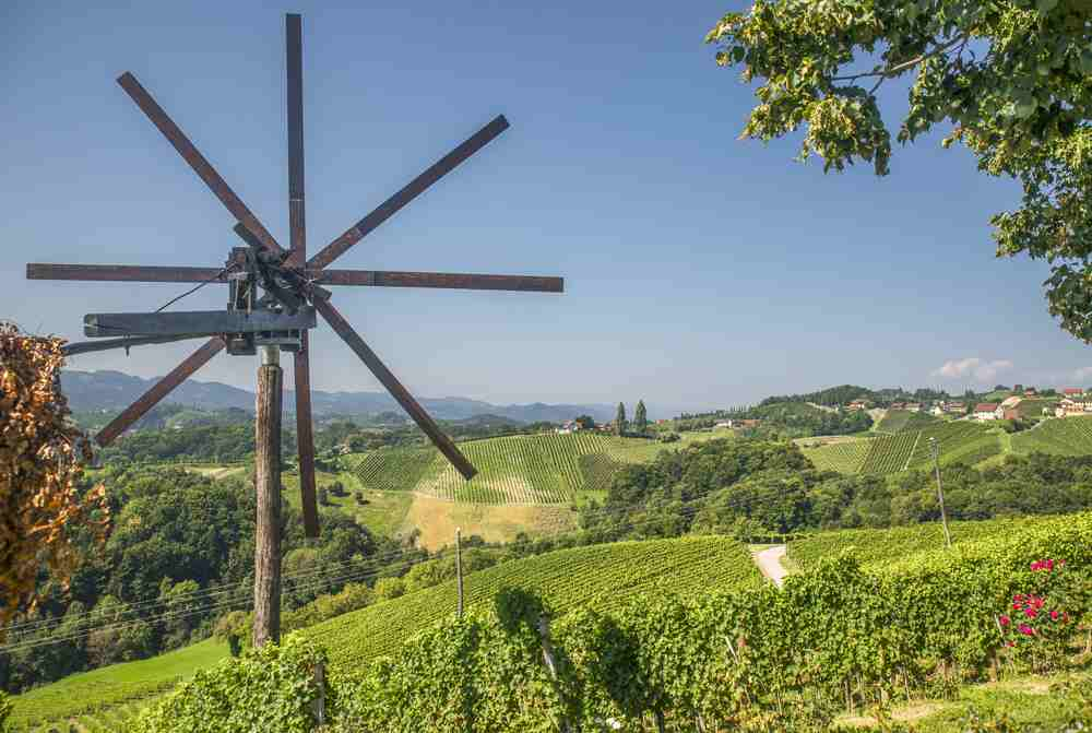 Best places to see in Maribor: The scenic wine roads around Maribor are one of the best things to see.