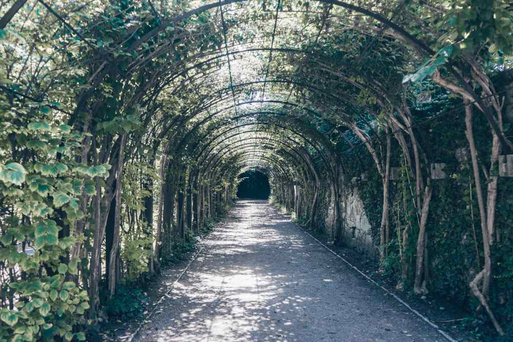 The vine tunnel at Mirabell gardens is where Maria and the children run through during 'Do Re Mi'.