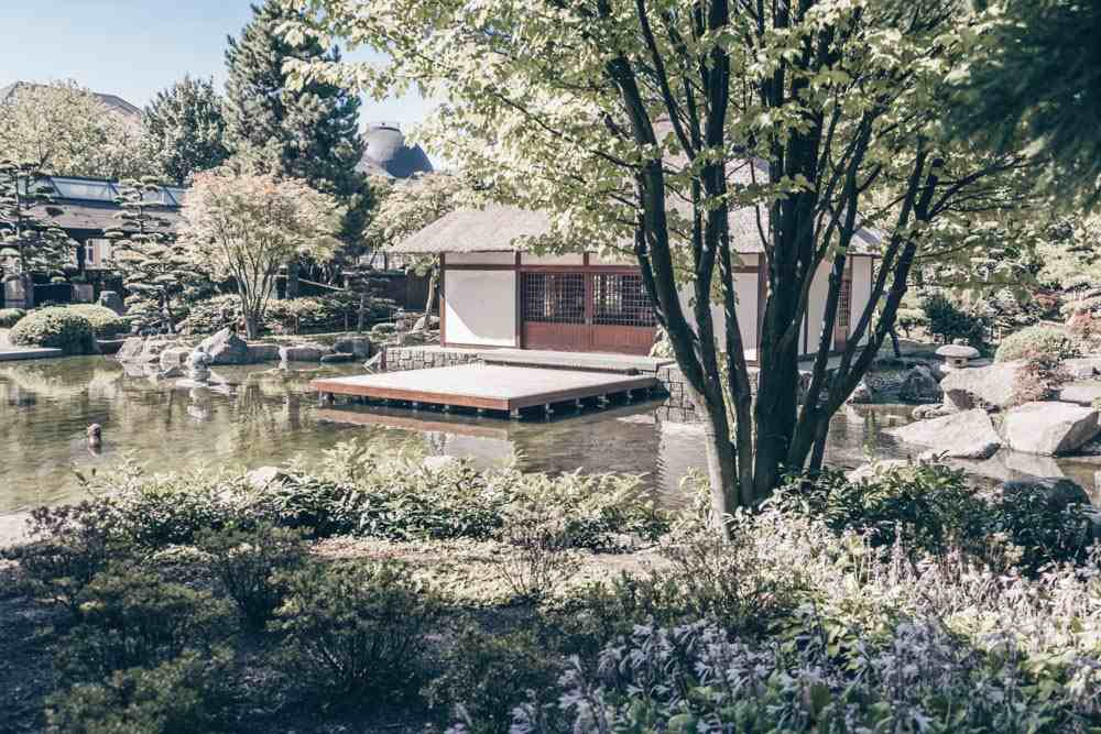 Things to do in Hamburg - Rock formations, flowers, pond and Teahouse in Planten un Blomen