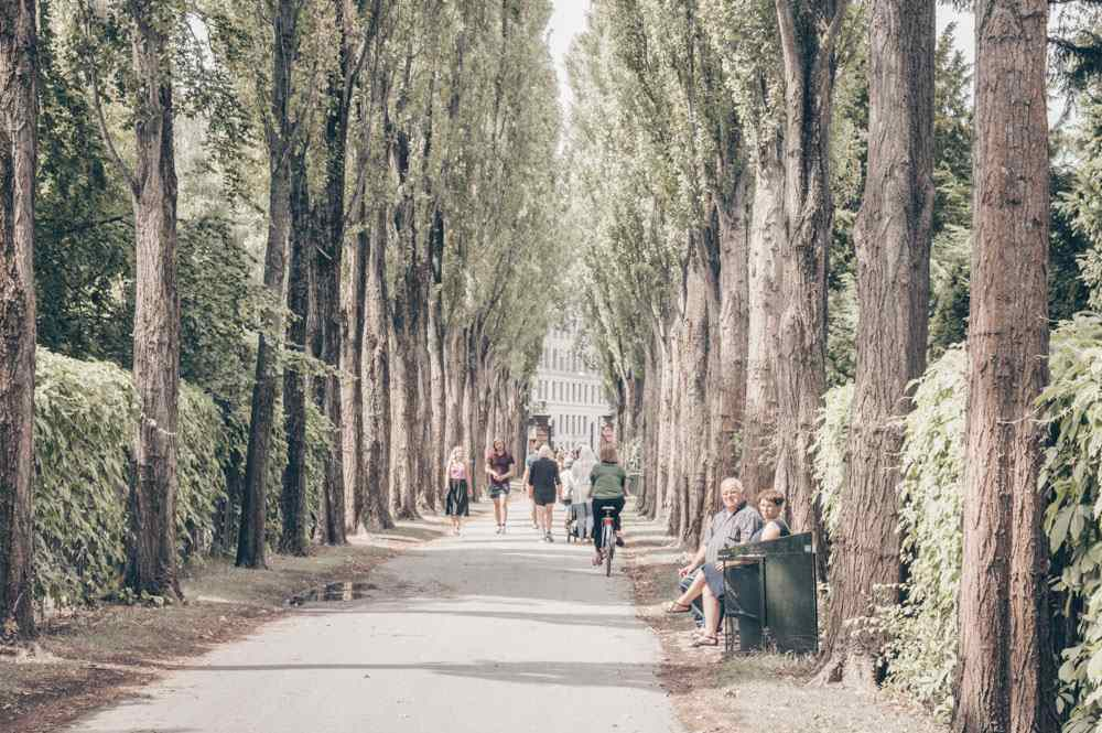 Things to see in Copenhagen: Various people walking, cycling and sitting at Assistens Cemetery