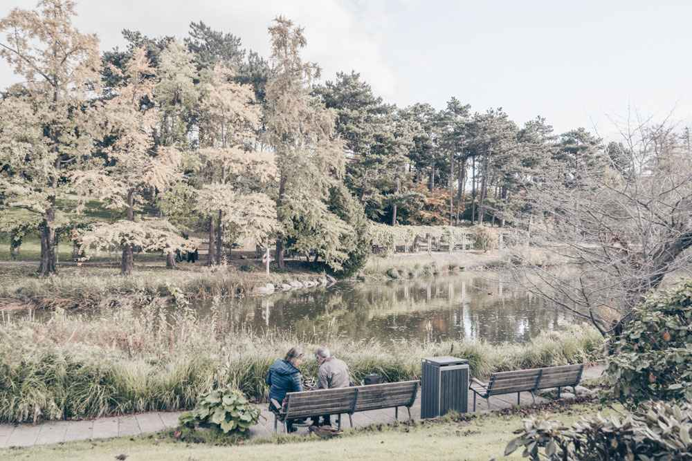 2 Days in Copenhagen: A couple sitting on a bench inside the Botanical Gardens