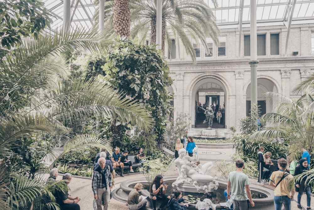Ny Carlsberg Glyptotek Copenhagen: People relaxing under the palm trees in the Winter Garden