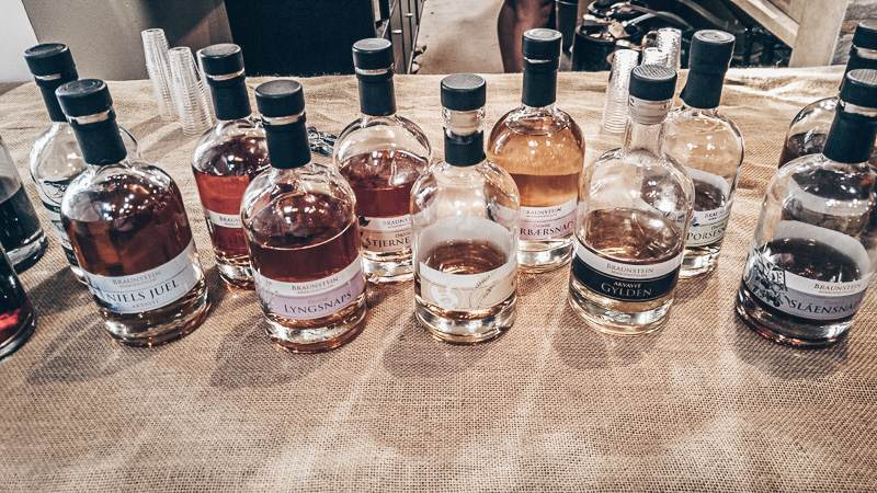 Day Trips from Copenhagen: Whiskey samples at the Braunstein distillery in Køge