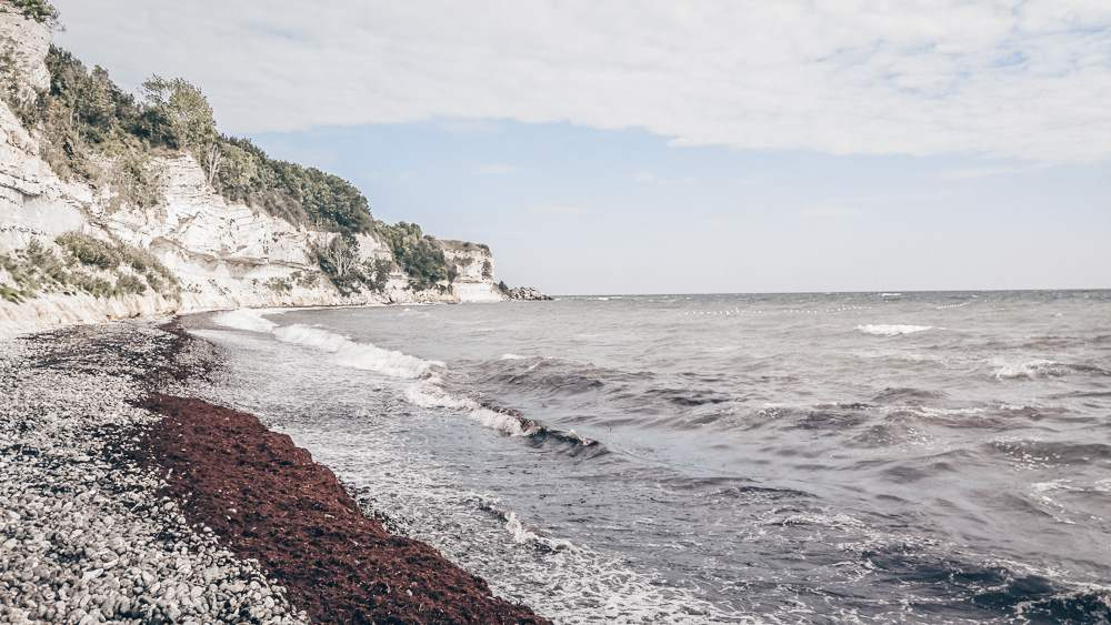 Places to see in Denmark: The white chalk and limestone Cliffs of Stevns