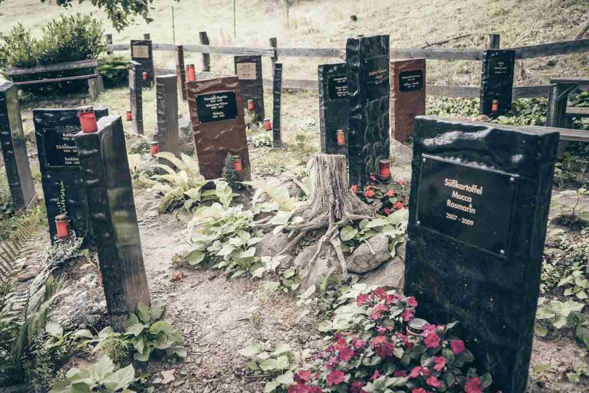 Zotter Chocolate Factory: Gravestones displaying discontinued chocolates at the Cemetery of Ideas