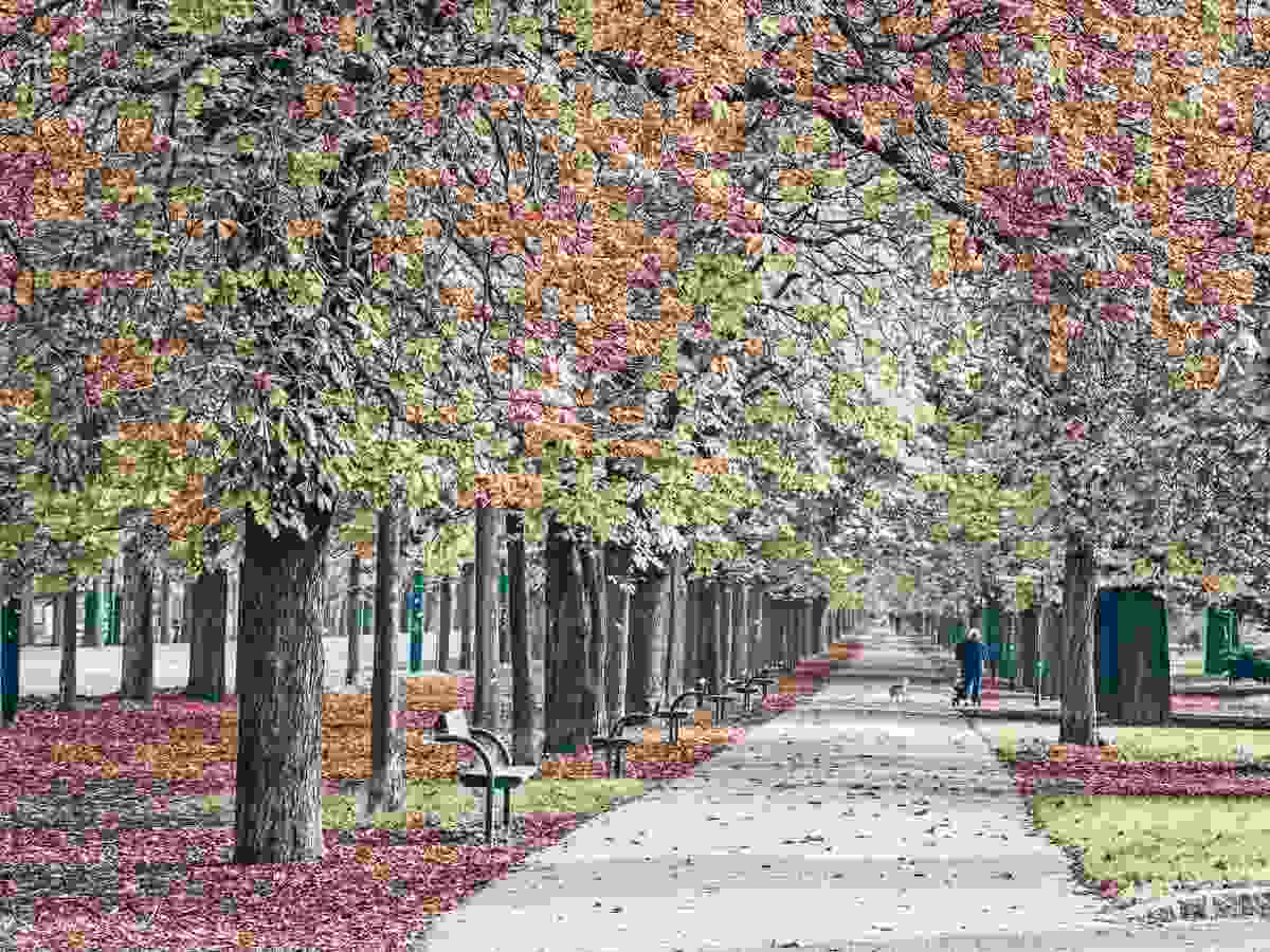 The chestnut-tree lined main alley of the Prater in Vienna