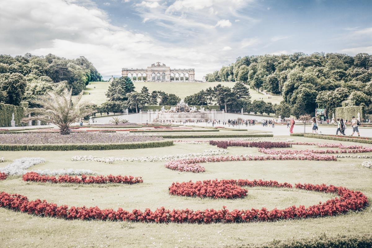 beautifully regimented flower beds of the Schönbrunn Palace Gardens
