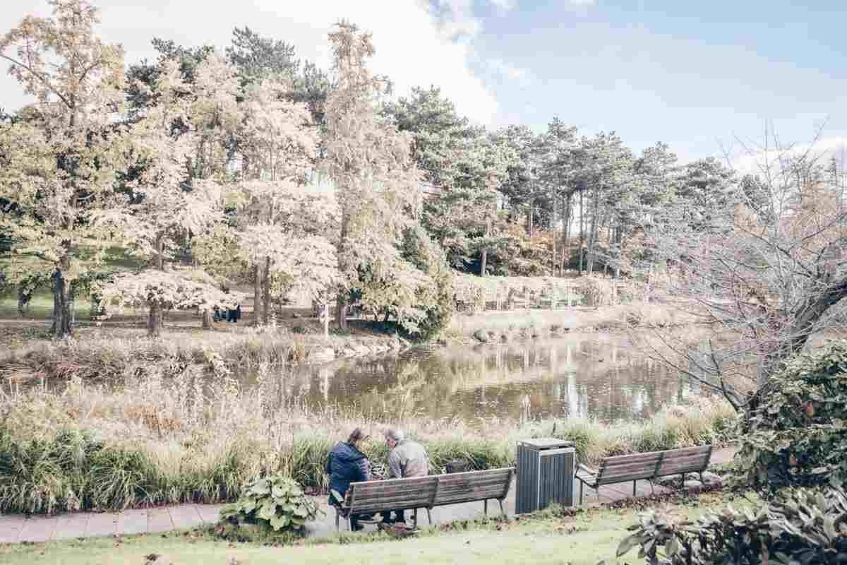 Copenhagen attractions: A couple sitting on a bench by the pond at the Botanical Gardens