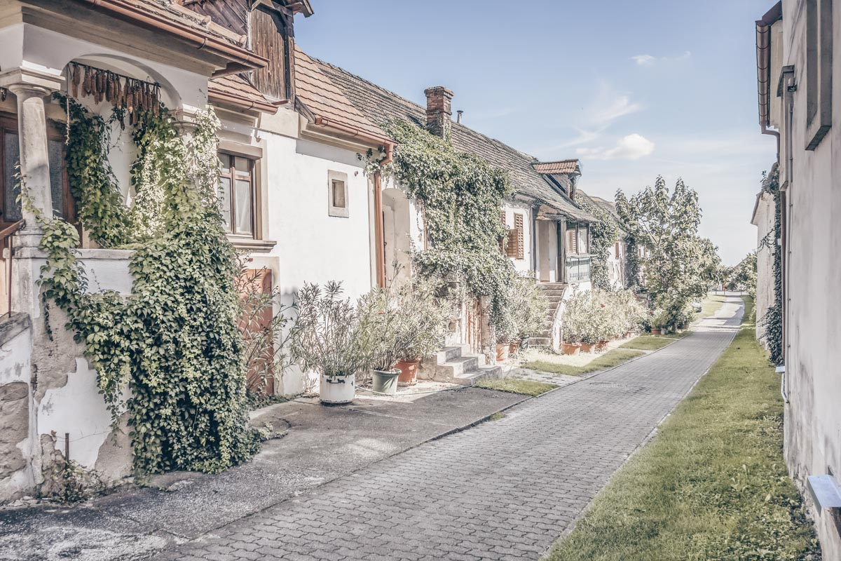 Must-see Austria: Row of picturesque whitewashed houses in Mörbisch am See