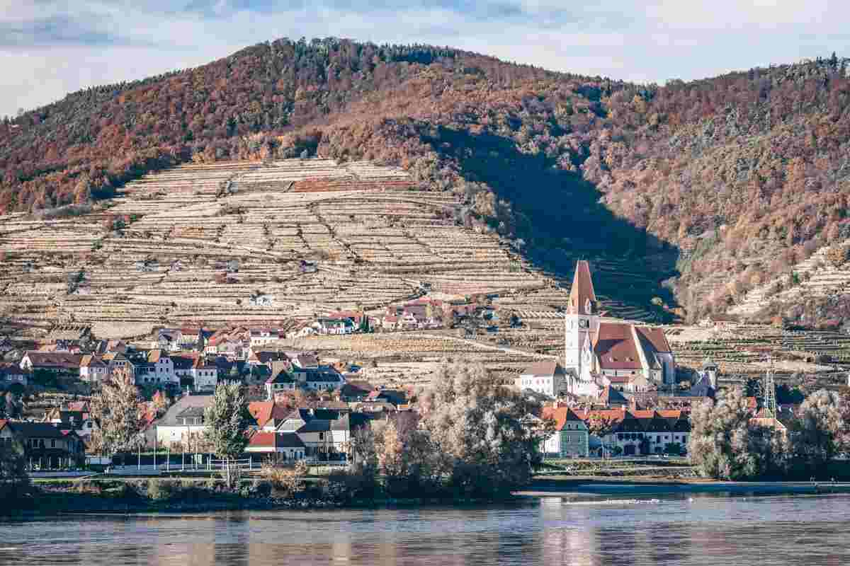 Wachau Valley: The town of Spitz an der Donau at the foot of steeply terraced hillsides.
