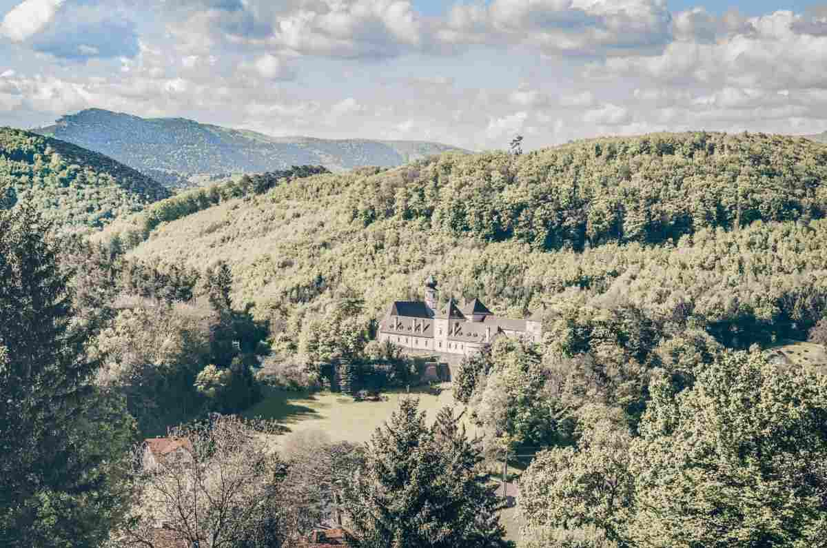 Day Trips from Vienna: The forested hills of the Vienna Woods (Wienerwald)