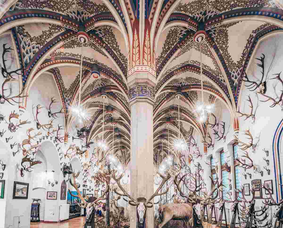 Antlers of wild animals inside the Museum of Agriculture at Vajdahunyad Castle in Budapest