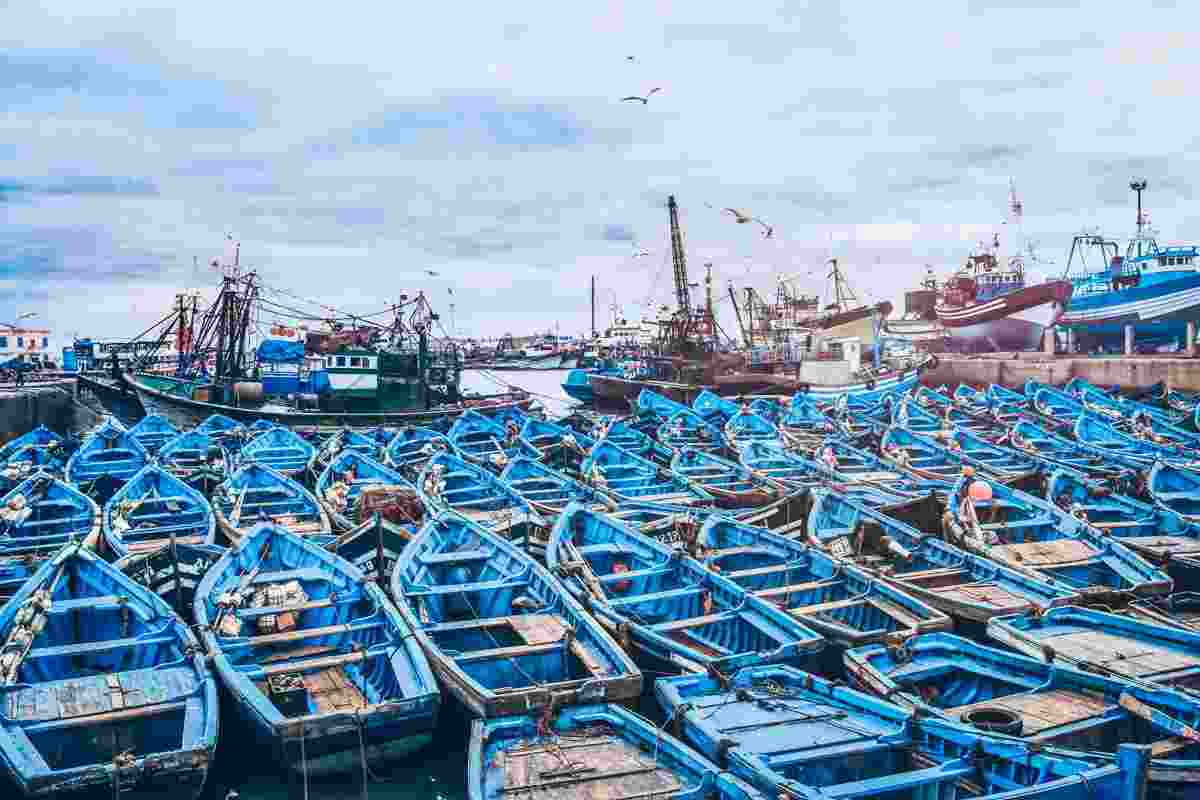 Things to do in Essaouira: Rows of wooden blue colored fishing boats docked in the port