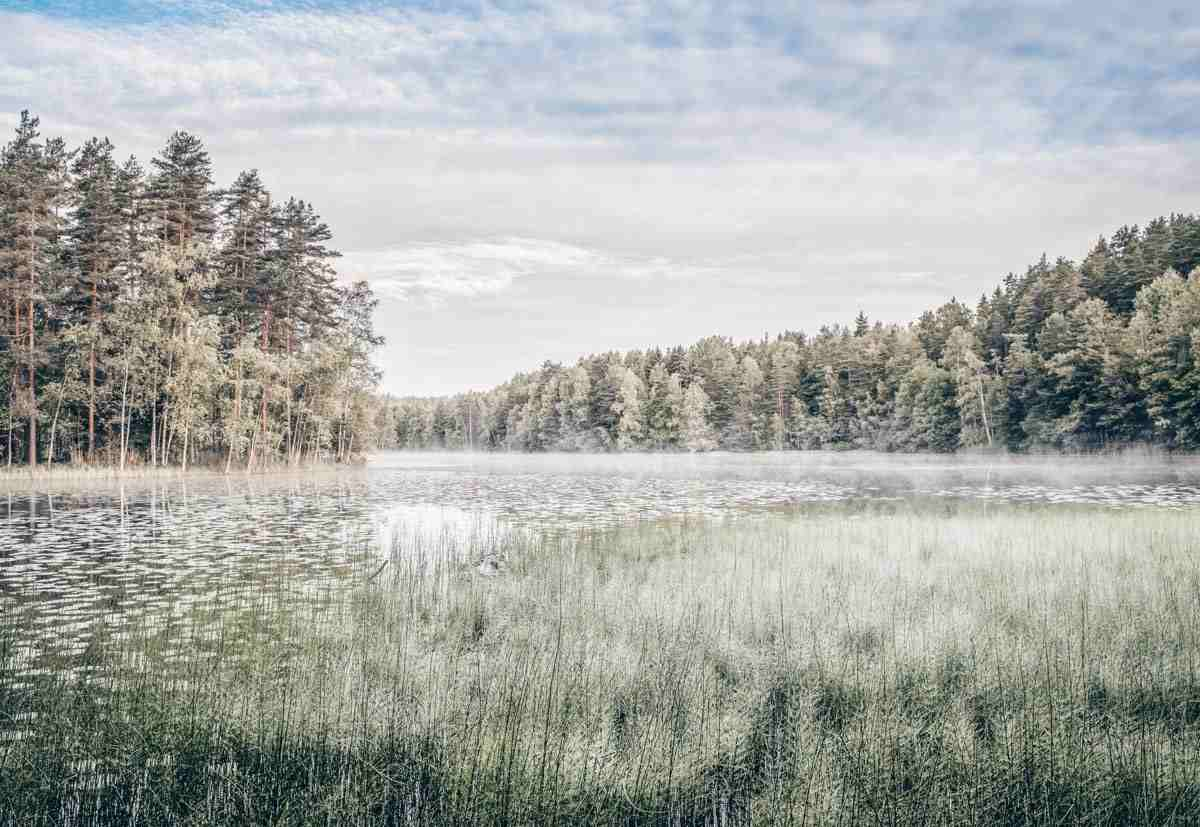 National Parks Finland: Tranquil forests and marshes in Nuuksio National Park