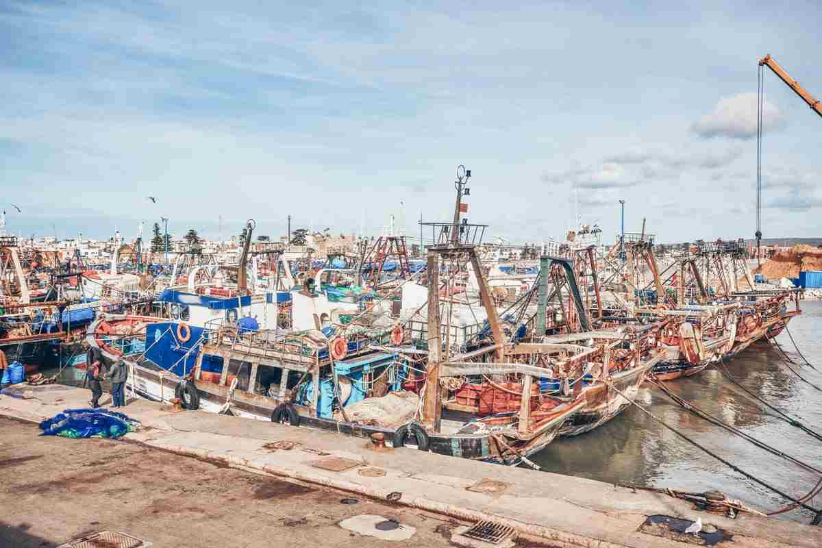Things to do see in Essaouira: Rows of fishing boats docked in the port