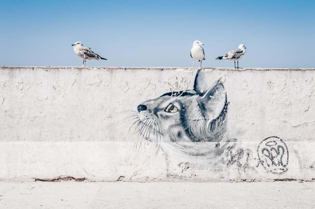 Things to see in Essaouira. A vivid street art mural