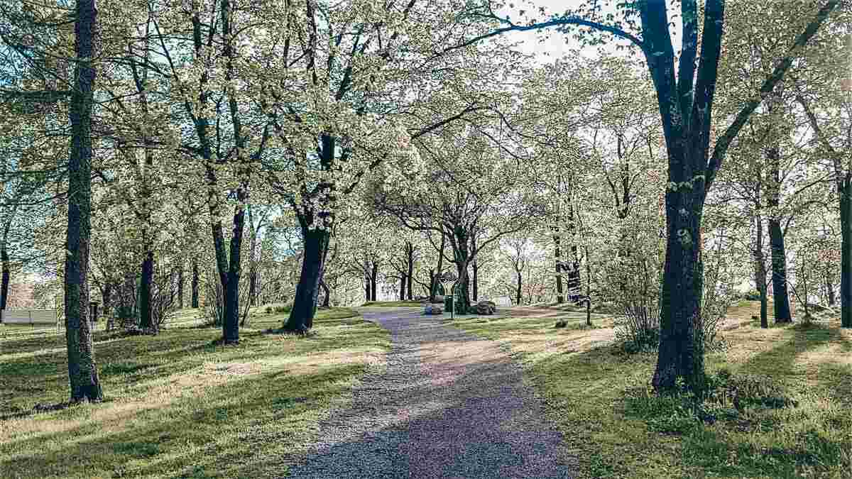 View of a verdant city park in Turku